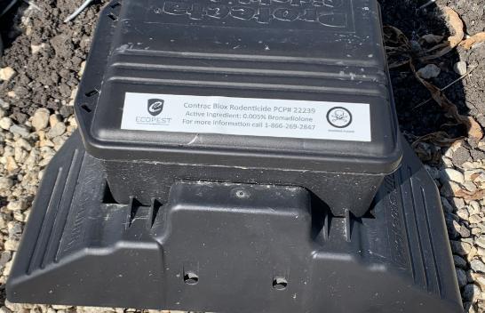 Alta RV Pest Control